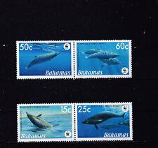 Bahamas 2007 - MNH - Vissen/Fish/Fische (WWF / WNF)