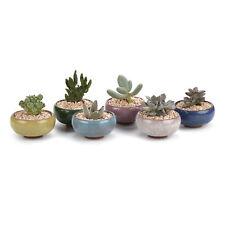 6x Colors 2.5 Inch Ceramic Ice Crack Zisha Succulent Plant Pot Cactus Flower T4U