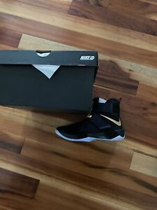 LeBron Soldier 10 ID Game 7 Finals 10.5 DS