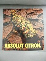 1998 PRINT AD, Absolut Citron, Vodka Bottle, Yellow Flowers
