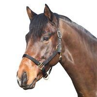 ELDORADO Nylonhalfter - schwarz - Pony Ponyhalfter Halfter für Ponys