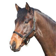 ELDORADO licou en nylon - Noir - Pony licou poney Halfter pour poneys