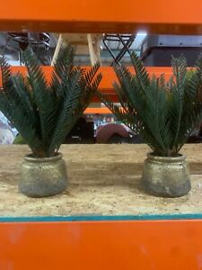 "SET OF 2 21"" x 12"" Artificial Potted Tropical Palm Green/Gold - Opalhouse™"