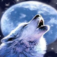 WOLF HOWLING  AT MOON 1 COASTERS SET OF 4 RUBBER BACKED