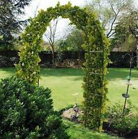 Metal Garden Arch Frame Climbing Plants Roses Archway Sweeping Curve Entrance