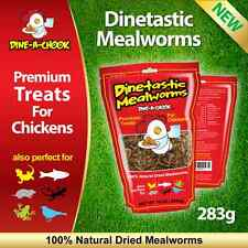 Dried Mealworms Treat for Chickens 283gm / Mealworm / Meal Worms / Poultry