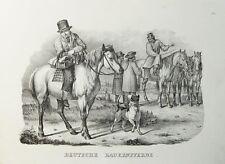 Deutsche Bauern-Pferde Haflinger Noriker Mecklenburger Rheinisches Kaltblut