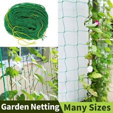 Gardening Tools And Equipment Plant Climbing Wall Clip Support Plante