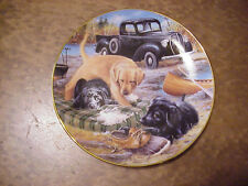"Breaking Camp  - Labs - Royal Doulton 8"" Very Fine Collector Plate E-2064"