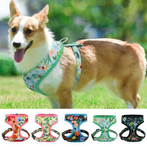 No Pull Dog Harness Floral Printed Mesh Dog Walking Vest for Small Medium Dogs