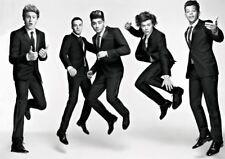 One Direction Boy Band Harry Styles A3 impresión de arte poster YF5395