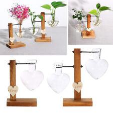 Vaso D'amore Vasi in Vetro a Forma Di Cuore Per Piante Succulente Di Fiori
