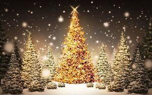 Christmas Tree Star Snowy Landscape Scene Winter Canvas Picture Wall Art Prints