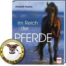 Im Reich der Pferde; Pferdesport (Polo Trabrennen Dressurreiten Springreiten usw