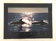 """Talbot AQUATIC LIGHT 1990's Poster 24"""" X 18"""" Whales Rolled Print"""