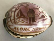 """Sea Shell 3"""" Carved Etched Natural Purple Aloha Hawaii"""