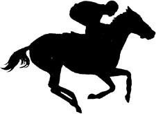 Race Horse (Flat), Equine,Car, Camper, Motorhome, Wall, Sticker, Decal. UK Made