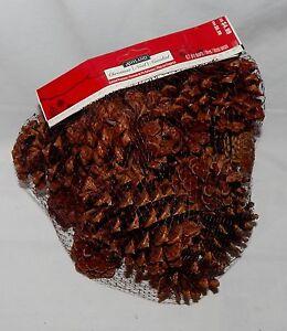 Pinecones Ashland Christmas Cinnamon Scented Smell USA  45B