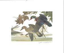 1982 - 1990 Ohio Duck Stamp Prints (9 prints total with Stamps)