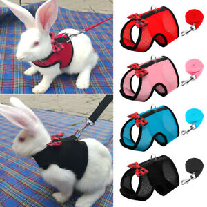 Soft Rabbits Harness and Lead for Small Animals Hamsters Cats Ferrets Squirrel