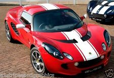 "Lotus 14"" Center Rally Stripes Stripe Decal Decal Exige Esprit Elise Sport"