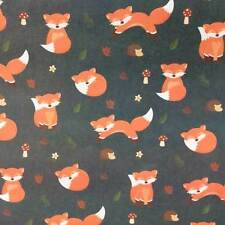 All Occasions Animals Wrapping Paper