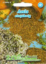 Anis Pimpinella anisum Kräuter Tee Gewürz Samen Saatgut Sämereien Seeds Aussaat