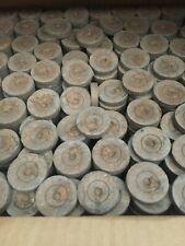 36mm - 42mm Jiffy 7 Peat pellets   1000 pellets