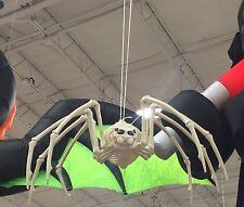 """Huge 42"""" Skeleton Spider Halloween Decoration Light Up Eyes"""