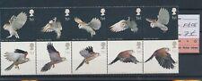 LM77300 Great Britain owls birds animals fine lot MNH fv 7 £