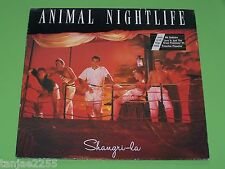 Animal Nightlife - Shangri La - 1985 Island Records LP