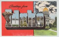 [36842] OLD LARGE LETTER POSTCARD GREETINGS from IDAHO