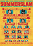 SummerSlam 2016 Finn Balor Vs Seth Rollins Wrestling Print 8x10 WWF WWE WCW