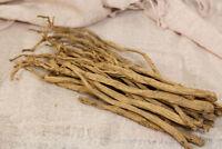 Tolle Kombination: eine Heilpflanze mit Zierwert Tang-Shen-Ginseng !