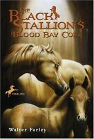 The Black Stallions Blood Bay Colt: (Reissue) by Walter Farley