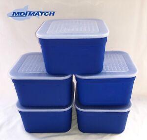 MDI Match 3.3 Pint Fishing Blue Maggot Bait Boxes + Lids Pack of 5