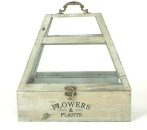 Terranium Wood & Glass Planter Box Handle Opens w/ Latch Plants & Flowers Green