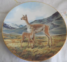 """""""The Vicuna"""" Plate by Will Nelson Last Of Their Kind: Endangered Species"""