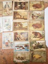 images anciennes Chromo Chocolat cacao poulain lot de 23 cartes