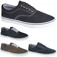 Mens Lace Up Casual Canvas Shoes Plimsolls Pumps Skates Trainers Size 7 - 12 New