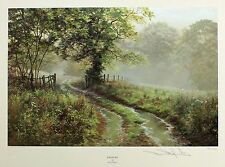 "David dipnall ""puddles"" country lane raining le signé! taille: 44cm x 50cm neuf"