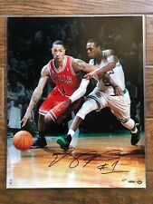 DERRICK ROSE CHICAGO BULLS HAND SIGNED 16X20 UDA LE 12 OF 50 NBA UPPER DECK