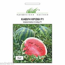 Watermelon Yanusik Seeds 1g Ukraine Арбуз Янусик S0095 Farmer/'s dream