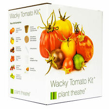 Seed Starter Growing Wacky Tomato Kit - Grow Your Own By Plant Birthday Gift