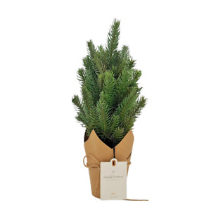 """Hearth & Hand with Magnolia 16"""" Faux Pine Christmas Tree with Craft Paper Base"""