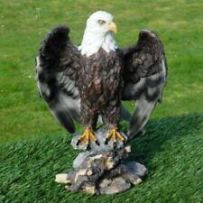 Gartenfigur Adler Greifvogel 12105 Weißkopfseeadler 30cm Garten lebensecht