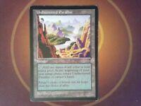 Undiscovered Paradise - Visions - Magic the Gathering Mtg Land