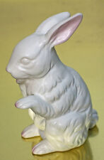 NAPCOWARE RABBIT