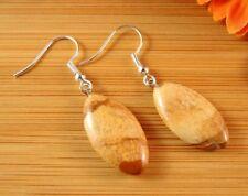 1 Pair of Picture Jasper Gemstone Dangle Earrings with Hypoallergenic Hooks #411