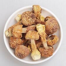 Agaricus Blazei Murill Mushroom Quality Dehydrated Dry Food 8.75oz